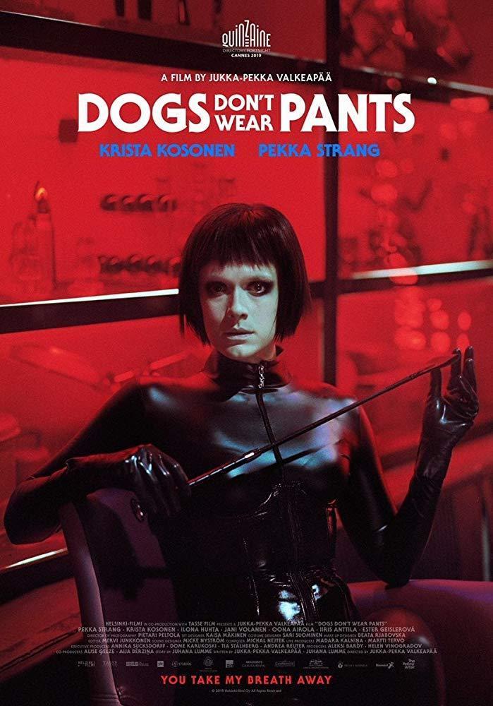 DOGS DON´T WEAR PANTS